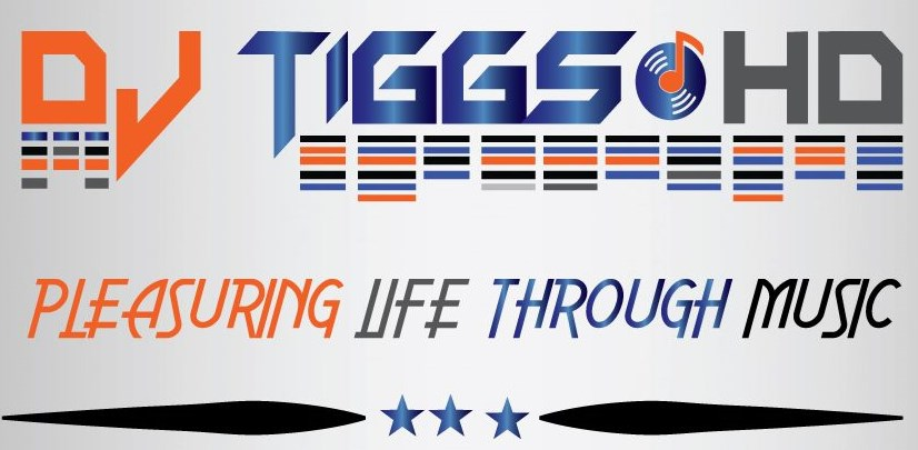 DJ TIGGS HD MOBILE DJ ENTERTAINMENT  - DJ - Middle Island, NY