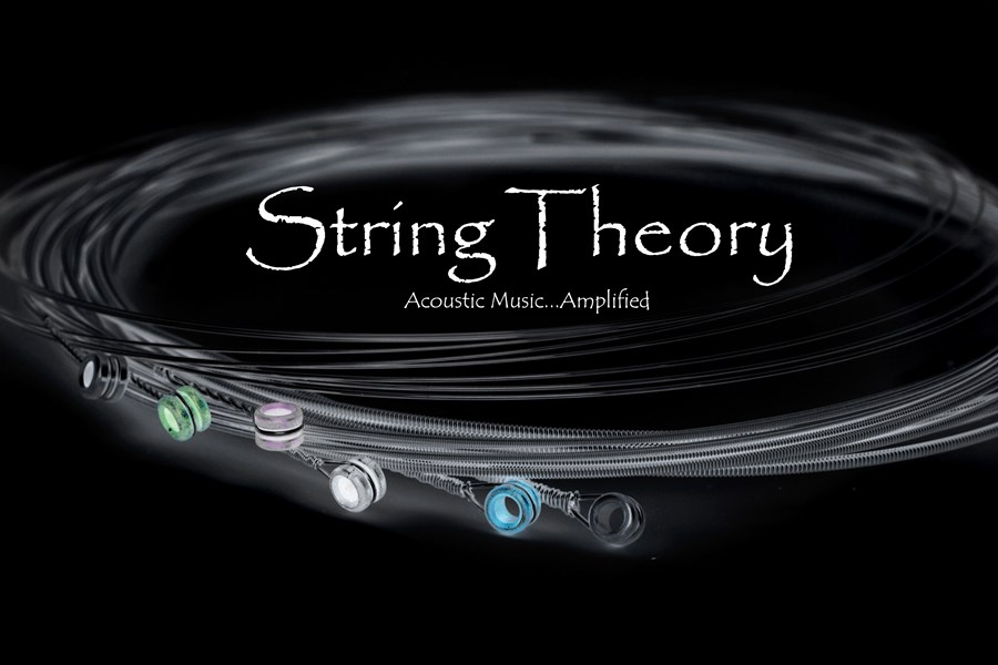 String Theory - Acoustic Band - Gurnee, IL