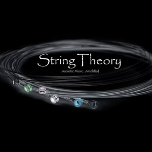 Chicago Acoustic Band | String Theory