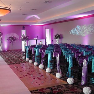Raphine Bar Mitzvah DJ | OLA Lighting & Djs