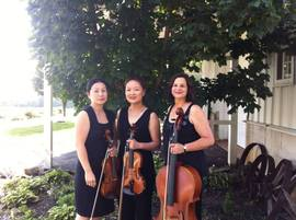 Dolce DaVita Strings, LLC - Chamber Music Trio - Edison, NJ