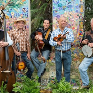 Hollywood, FL Folk Band | Matthew Sabatella and the Rambling String Band