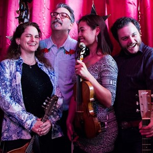 Hastings on Hudson, NY Bluegrass Band | Tara Linhardt Band