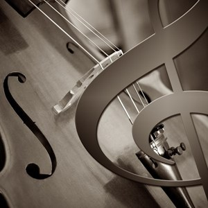 Raleigh, NC Violinist | Ensembles on Cue