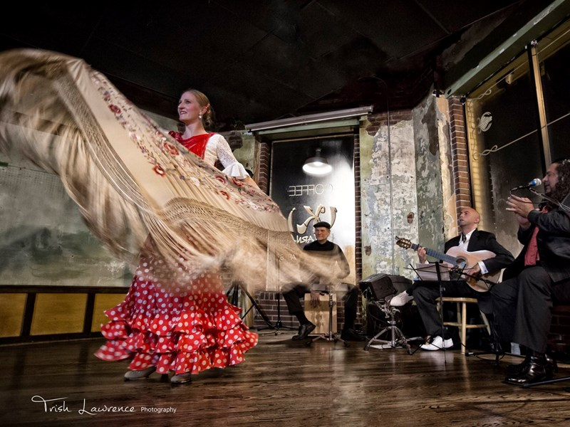 Ania La Candela Flamenco - Flamenco Dancer - Atlanta, GA
