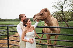 Earth Ling Events - Wedding Planner - Dallas, TX