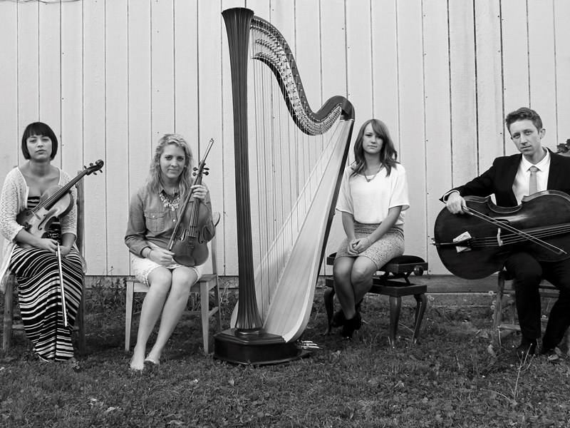 Something Borrowed Harp & Strings - String Quartet - Provo, UT