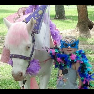Hawkinsville Party Inflatables | Pony Pals Party Ponies