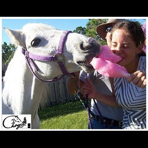Fort Lauderdale Pony Rides | Choyce Party Ponies, Clown & Bounce
