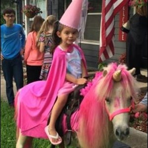 San Antonio Animal For A Party | Pony Rides and Petting Zoo