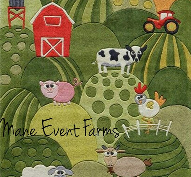 Mane Event Farms - Petting Zoo - Indianapolis, IN