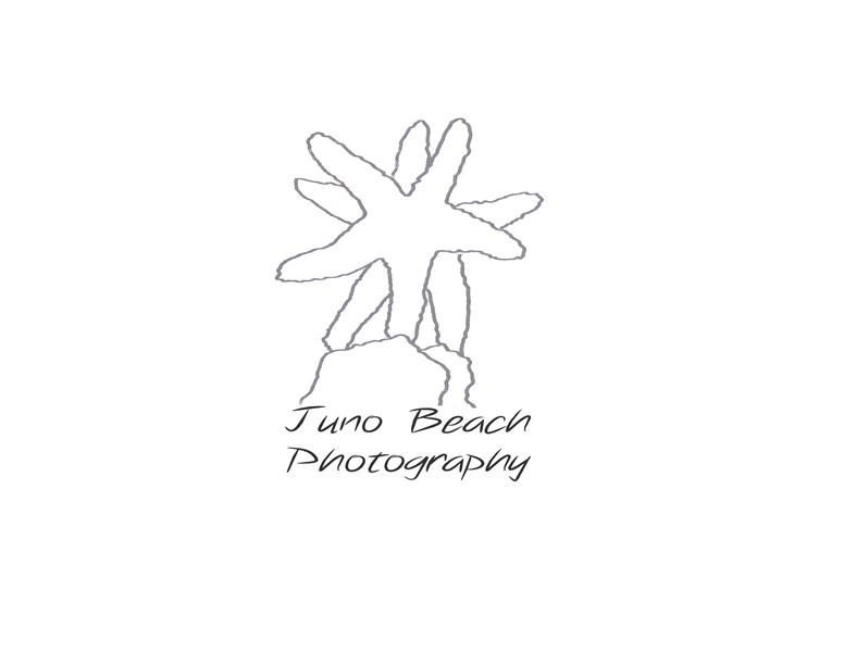 Juno Beach Photography - Photographer - North Palm Beach, FL