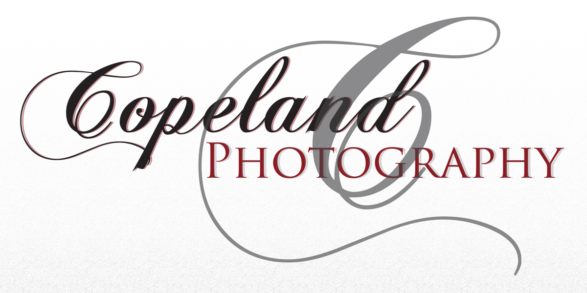 Copeland Photography - Photographer - Fountain Hills, AZ