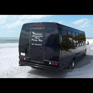 Sarasota Party Bus | Princess Party Bus