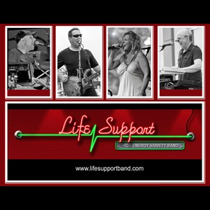 Sterling Cover Band | Life Support Band