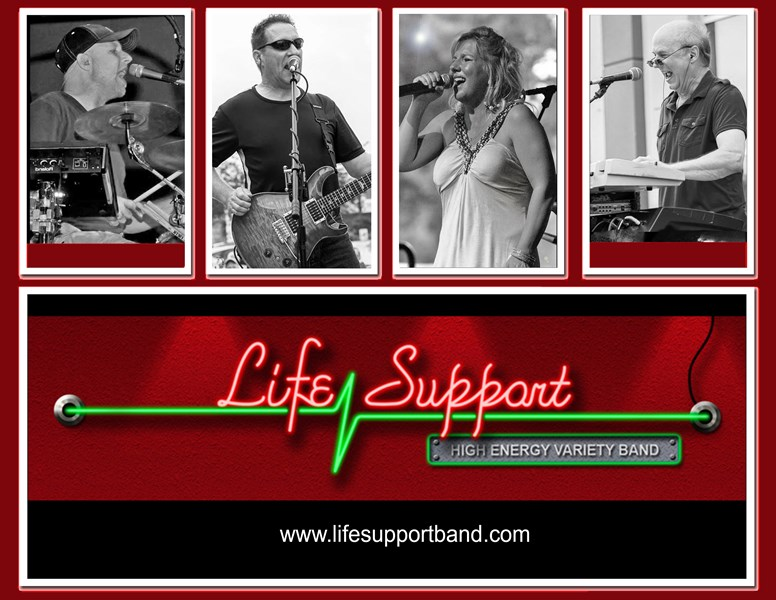 Life Support Band - Cover Band - Dewitt, MI