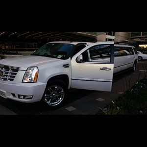 Woodland Wedding Limo | Millenium Chicago Limousine