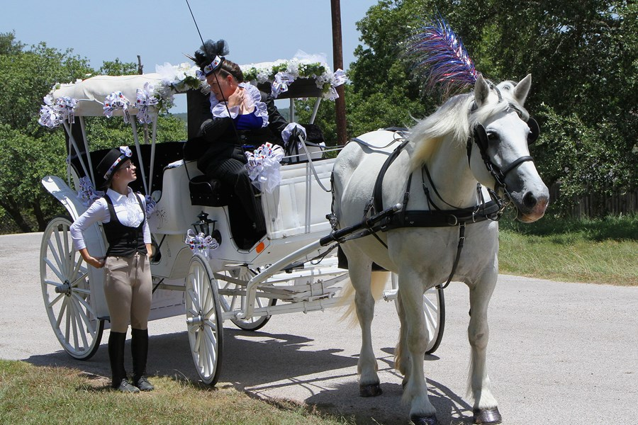 Fantasia Carriage, LLC - Animal For A Party - Austin, TX