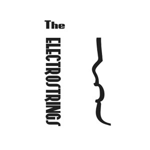 Brooklyn Top 40 Trio | The Electrostrings NYC