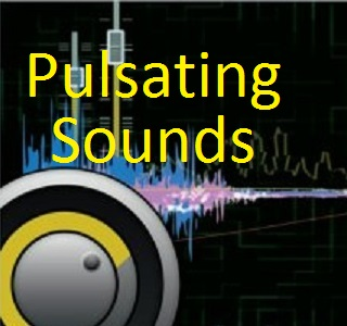 Pulsating Sounds DJ Entertainment - Mobile DJ - Great Mills, MD