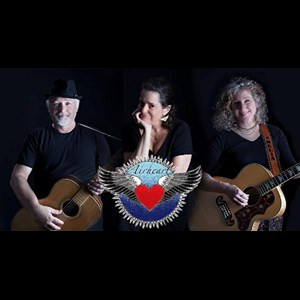 Turnertown Oldies Band | Airheart