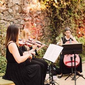 Modesto Chamber Music Duo | Bay Area Strings