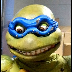 Columbus Puppeteer | Ohio Turtle