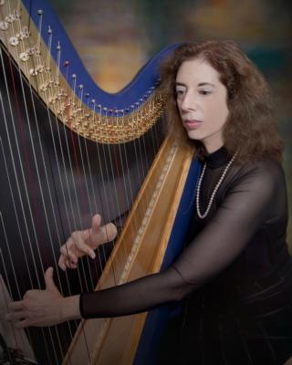 Harp Music By Lisa Handman (harpnotes) | Alpharetta, GA | Harp | Photo #1