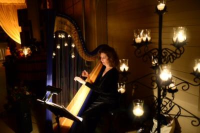 Harp Music By Lisa Handman (harpnotes) | Alpharetta, GA | Harp | Photo #10
