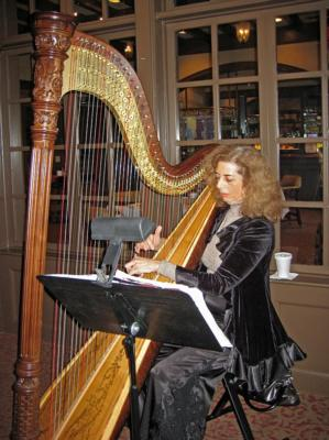 Harp Music By Lisa Handman (harpnotes) | Alpharetta, GA | Harp | Photo #5