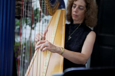 Harp Music By Lisa Handman (harpnotes) | Alpharetta, GA | Harp | Photo #13