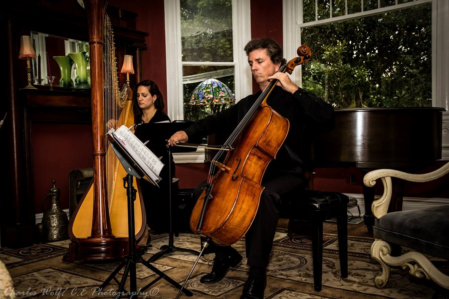 Orlando Harp and Cello Duo - Cellist - Orlando, FL