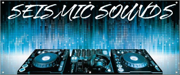 Seismic Sounds Entertainment, Flat Rate DJ Service - DJ - West Milford, NJ