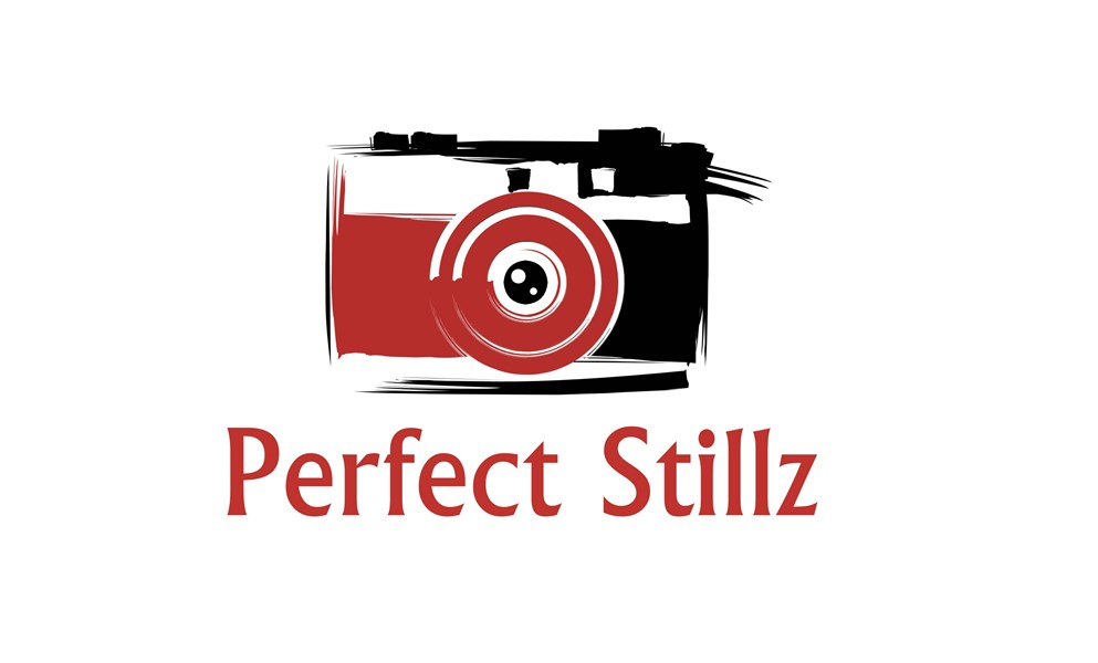 Perfect Stillz - Photo Booth - Raleigh, NC