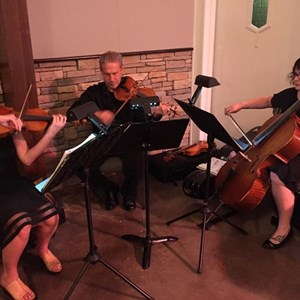 Bluejacket Chamber Music Quartet | Simpatico Trio
