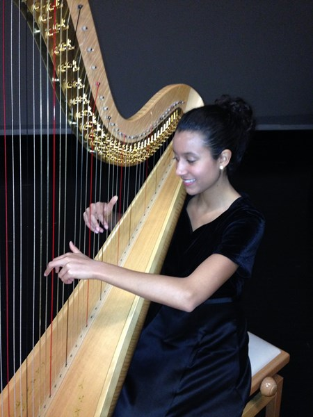 Liv Through Music - Harpist - Tampa, FL