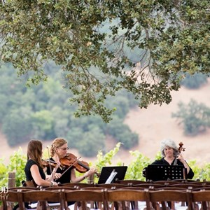 Greenbrae Chamber Music Duo | Garden Strings