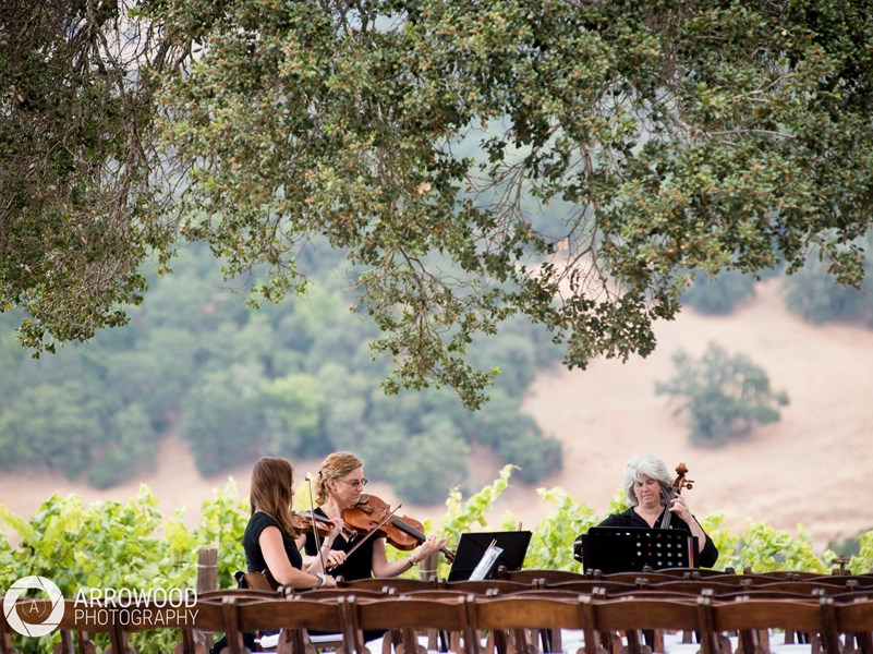 Garden Strings - String Quartet - Martinez, CA