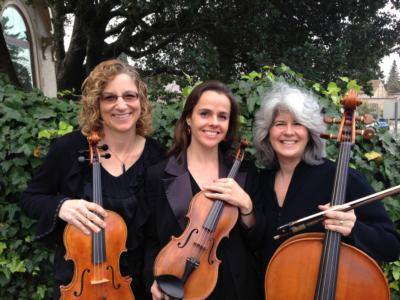 Garden Strings | San Leandro, CA | Classical String Quartet | Photo #5