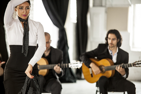 The Martin Metzger Flamenco Ensemble - Flamenco Band - Evanston, IL