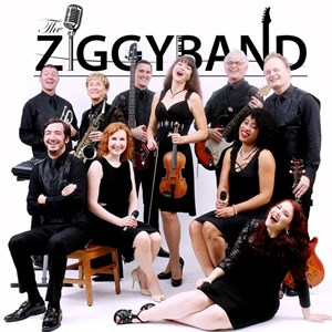 Houston, TX Dance Band | THE ZIGGY BAND