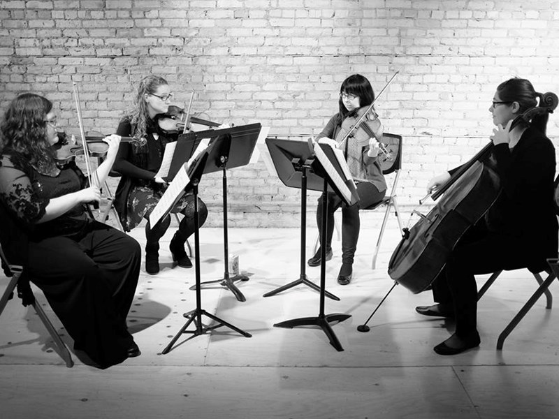 Mill City String Quartet - String Quartet - Minneapolis, MN