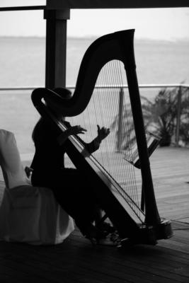 Alison Renee | New York, NY | Classical Harp | Photo #7