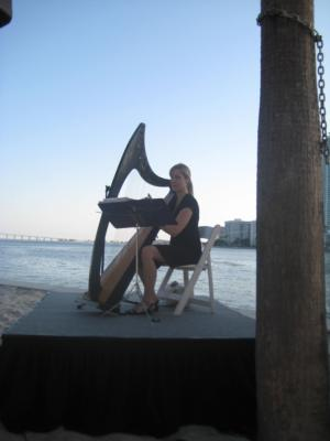 Alison Renee | New York, NY | Classical Harp | Photo #6