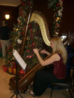 Alison Renee | New York, NY | Classical Harp | Photo #5