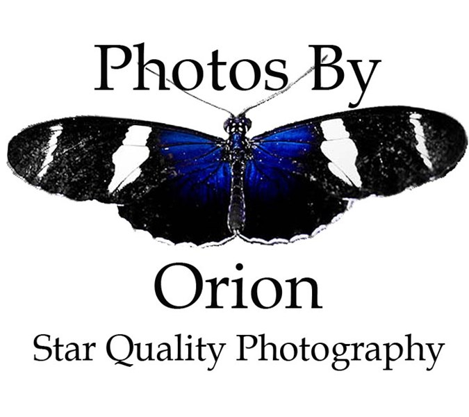 Photos By Orion - Photographer - Salem, OR