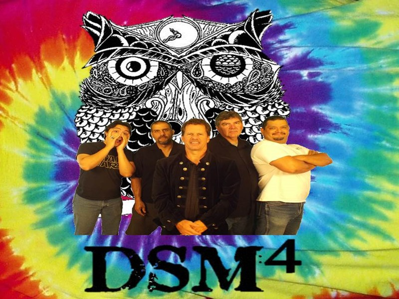 DSM4 Acoustic - Acoustic Band - Purcellville, VA