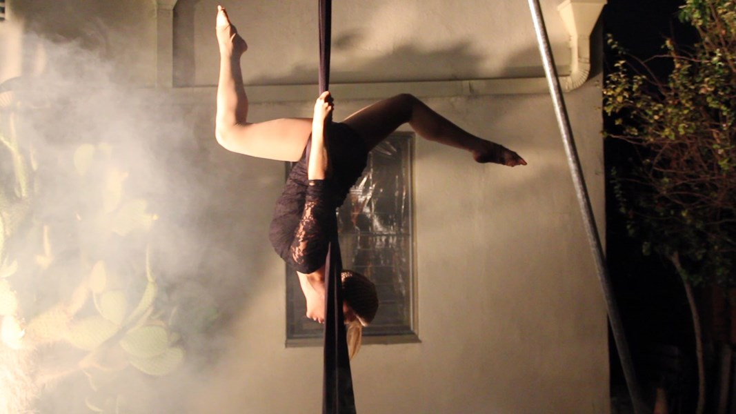 Dances with Silks - Acrobat - Los Angeles, CA