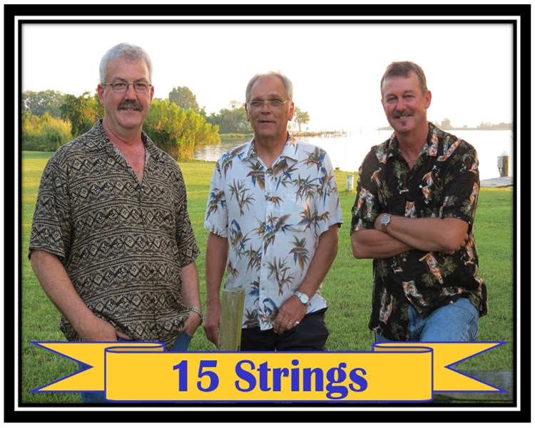 15 Strings - Bluegrass Band - Park Hall, MD