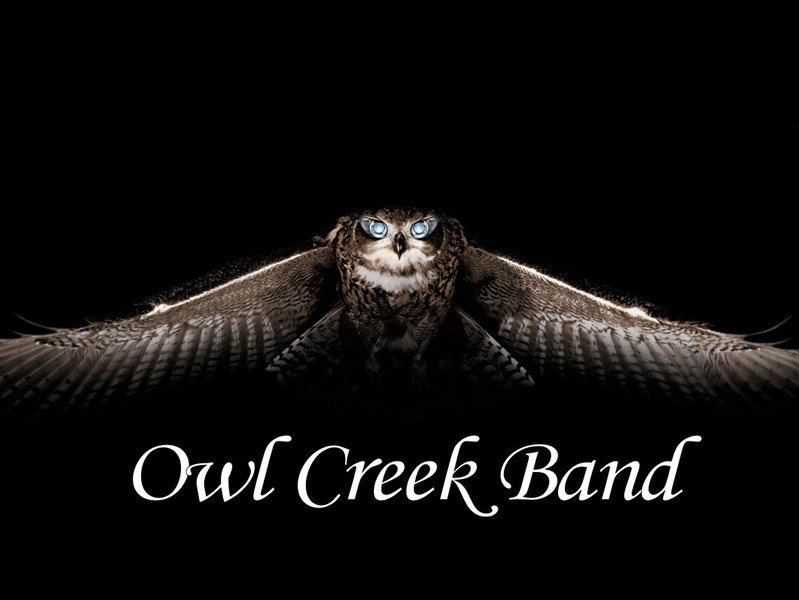Owl Creek Band - Country Band - Atlanta, GA